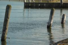 oude-landbouwhaven-aan-de-oesterputten