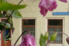 prachtige-flora-in-de-dorpskom